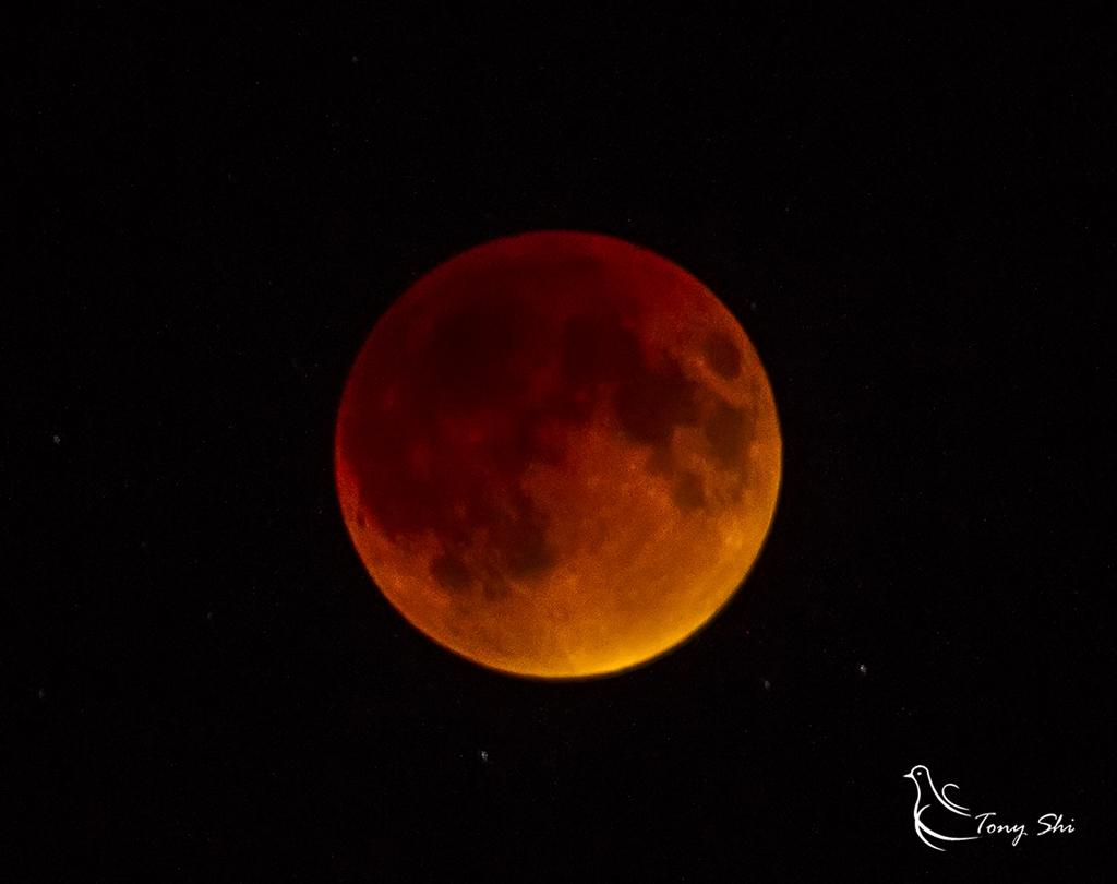 见证天文奇观【超级月亮+月全食】_图1-8