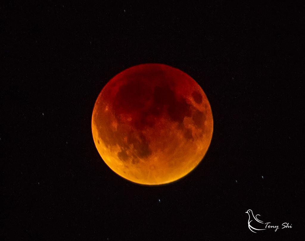 见证天文奇观【超级月亮+月全食】_图1-9