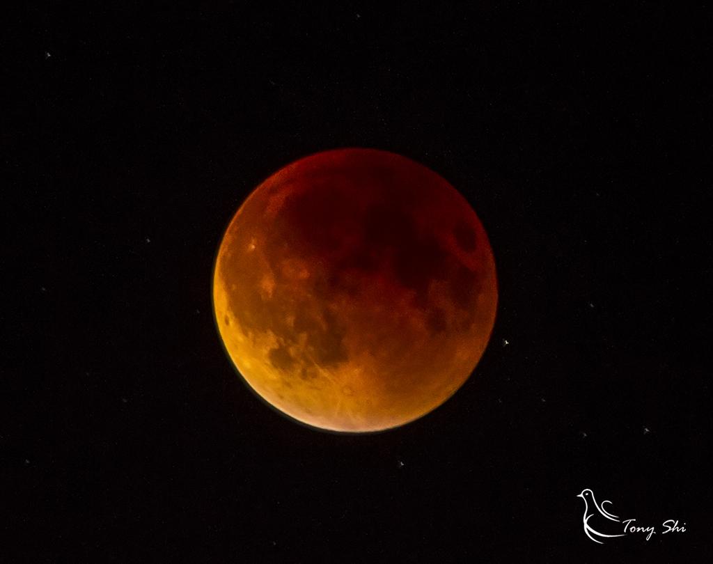 见证天文奇观【超级月亮+月全食】_图1-10