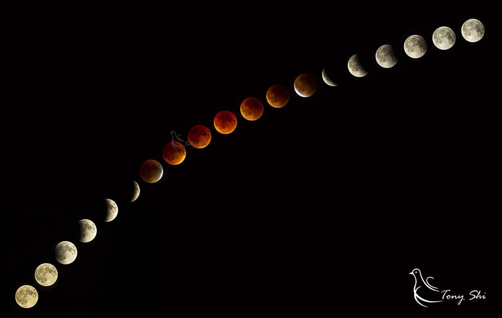见证天文奇观【超级月亮+月全食】_图1-18