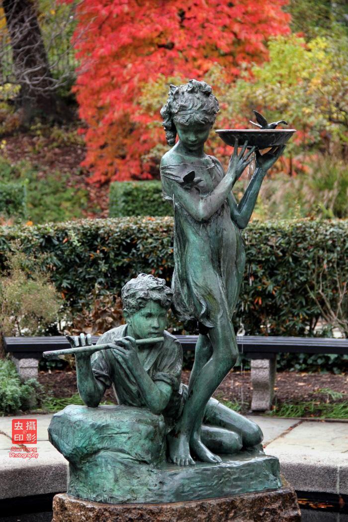 【攝影蟲】紐約中央公園紅葉舞秋風_图1-12