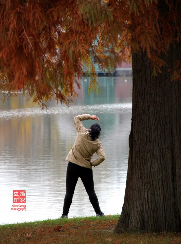 【攝影蟲】紐約中央公園紅葉舞秋風_图1-15