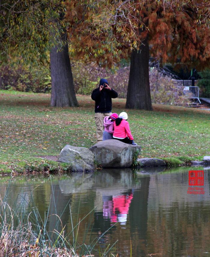 【攝影蟲】紐約中央公園紅葉舞秋風_图1-16