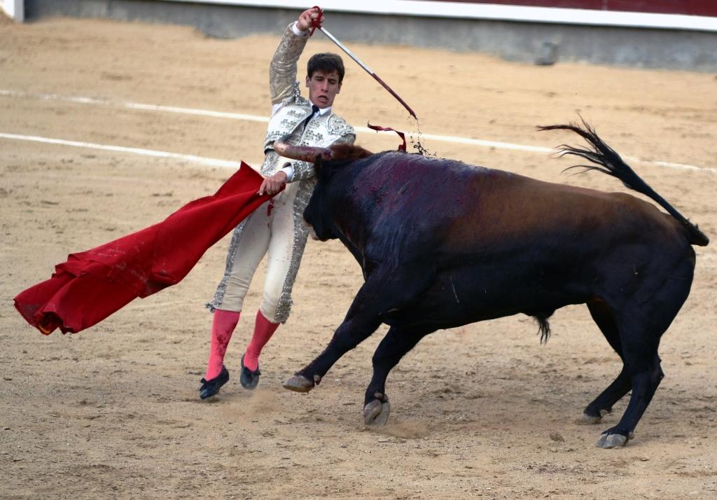 激情西班牙:午后的非正常死亡_图1-5