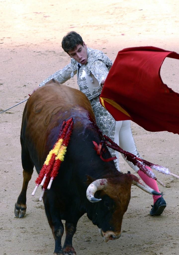 激情西班牙:午后的非正常死亡_图1-7