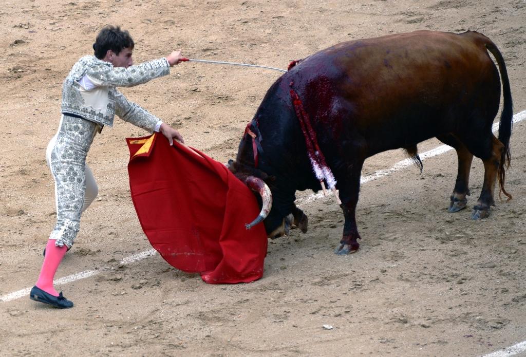 激情西班牙:午后的非正常死亡_图1-9