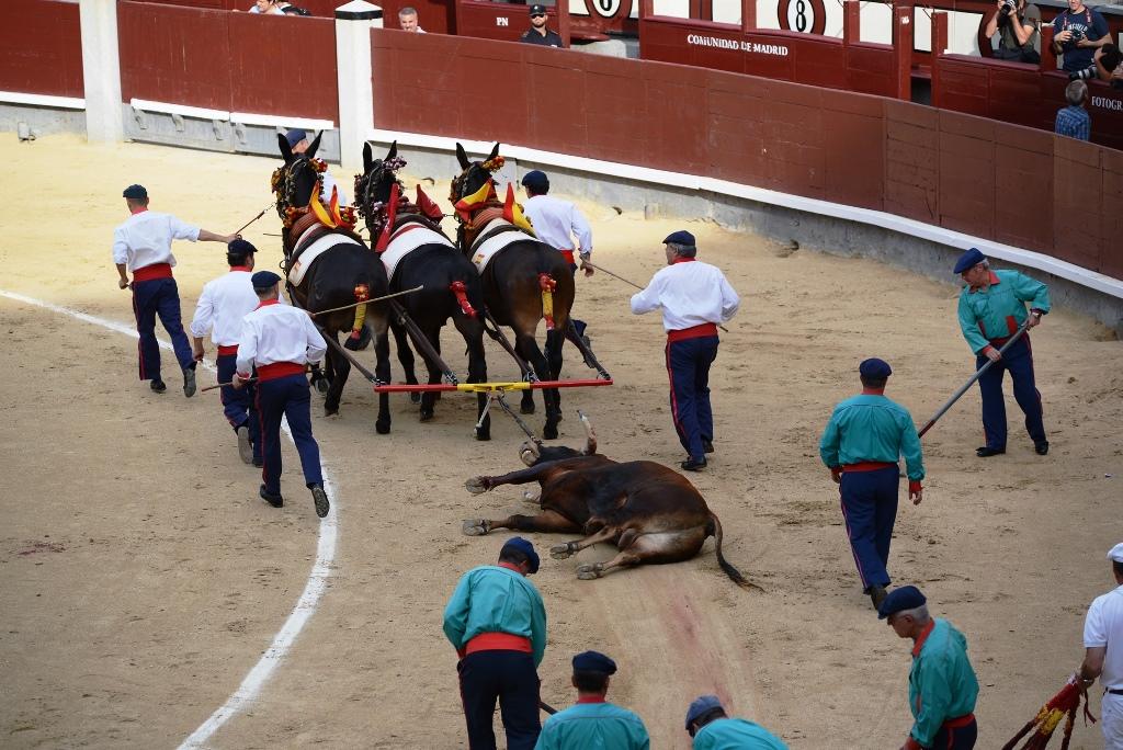 激情西班牙:午后的非正常死亡_图1-10