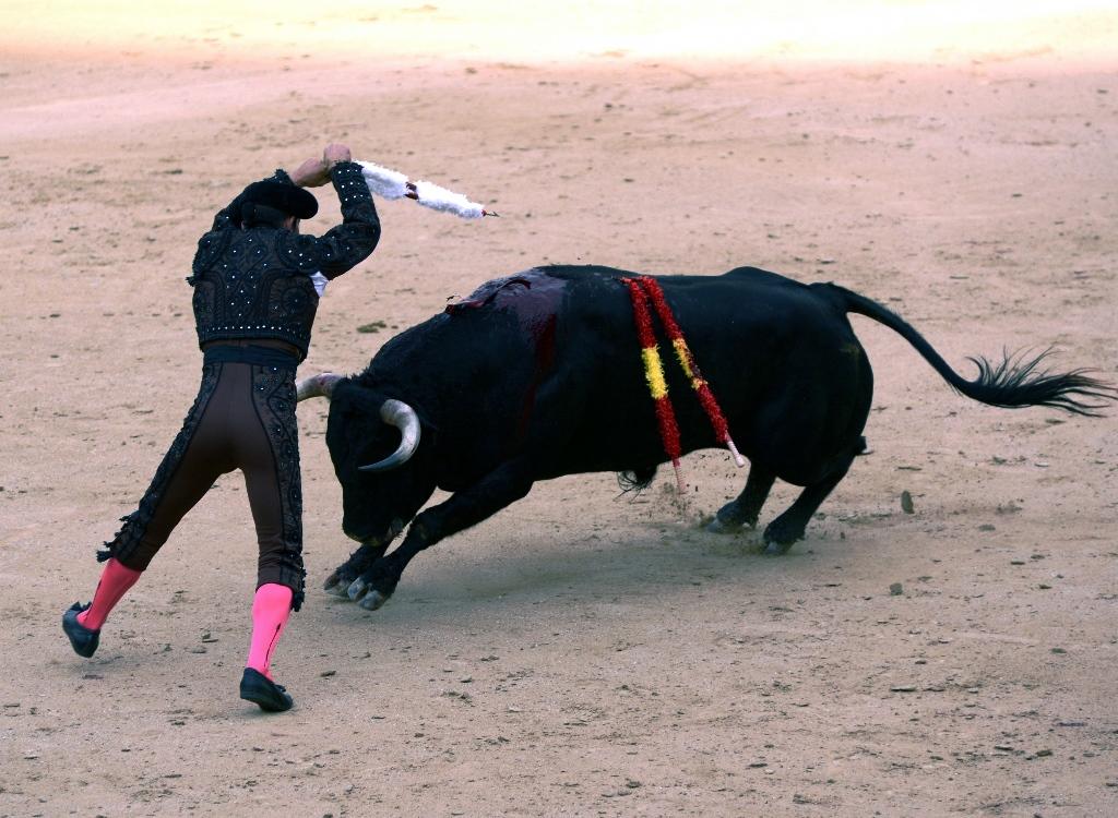 激情西班牙:午后的非正常死亡_图1-11