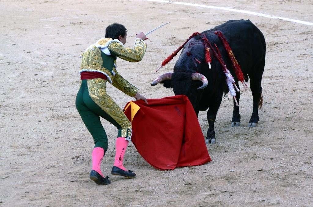 激情西班牙:午后的非正常死亡_图1-16