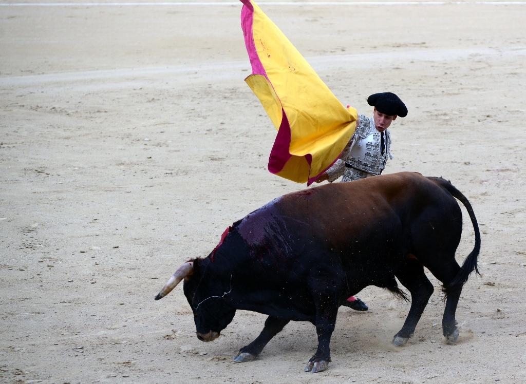激情西班牙:午后的非正常死亡_图1-20