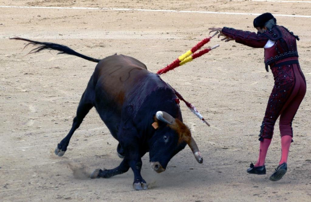 激情西班牙:午后的非正常死亡_图1-21