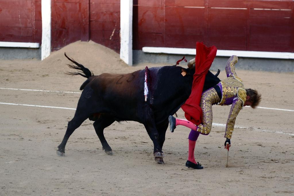激情西班牙:午后的非正常死亡_图1-24