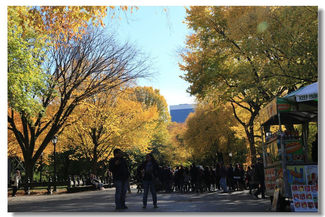 中央公园秋色一组_图1-15