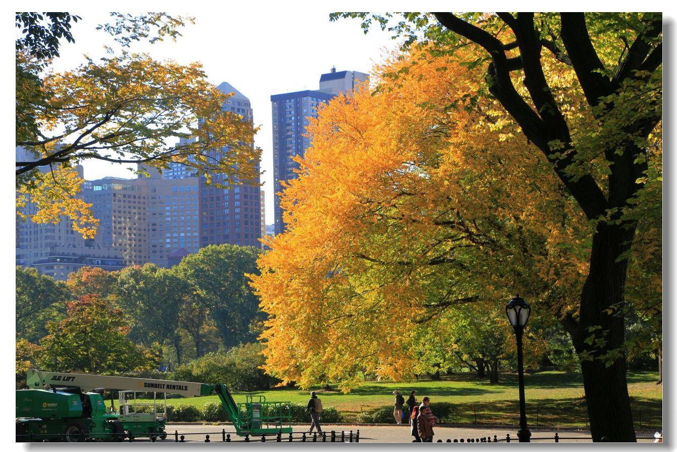 中央公园秋色一组_图1-22