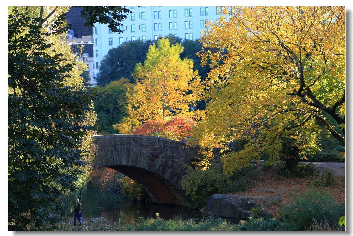 中央公园秋色一组_图1-23