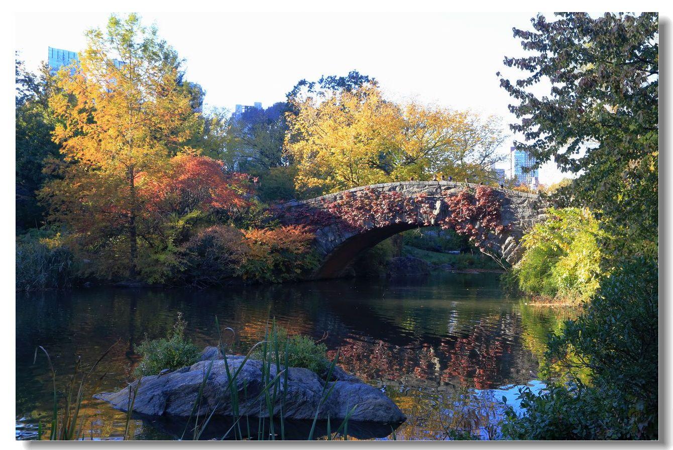 中央公园秋色一组_图1-24