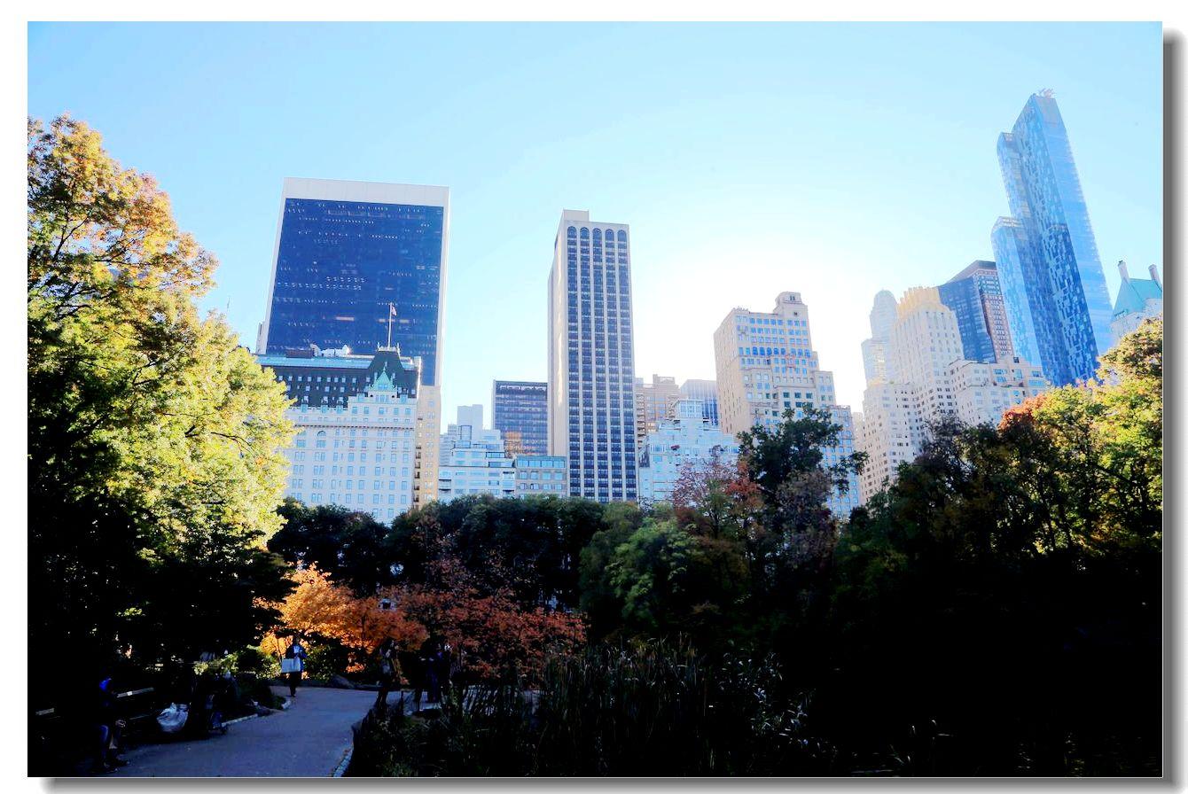 中央公园秋色一组_图1-25