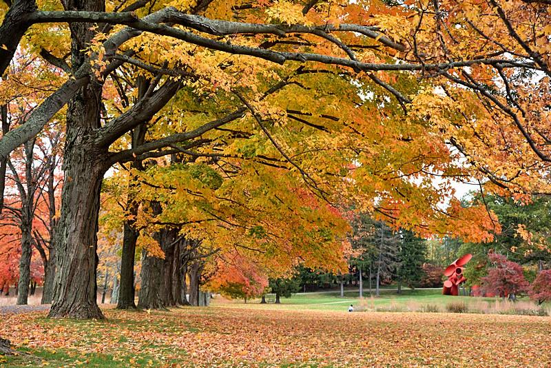 Autumn_图1-8