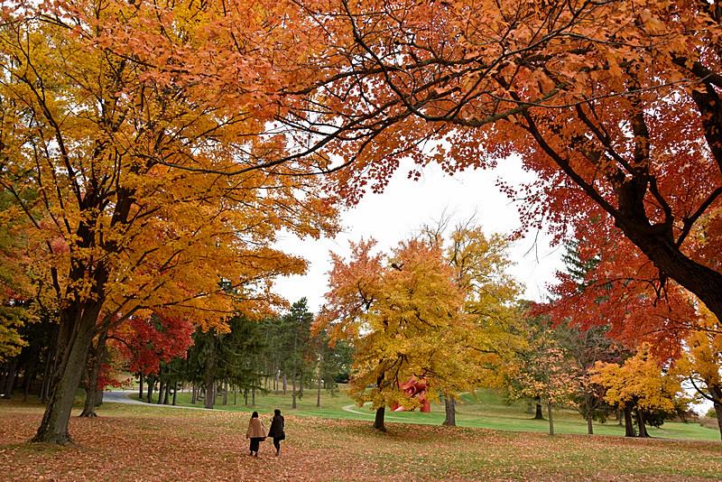 Autumn_图1-6