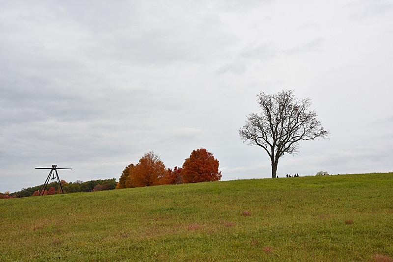 Autumn_图1-2