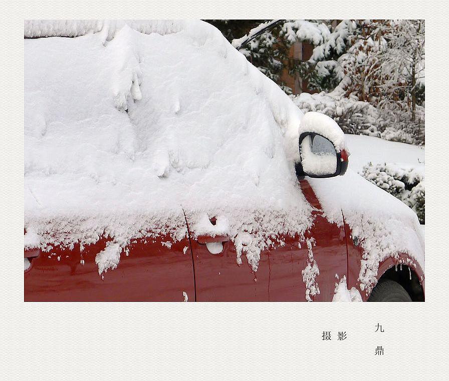 摄影  雪  后_图1-4