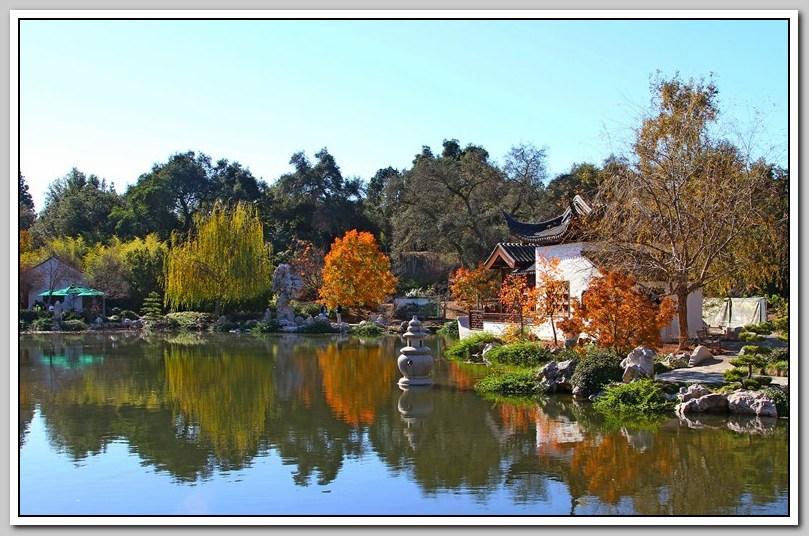 秋景 (二) -- 中国园