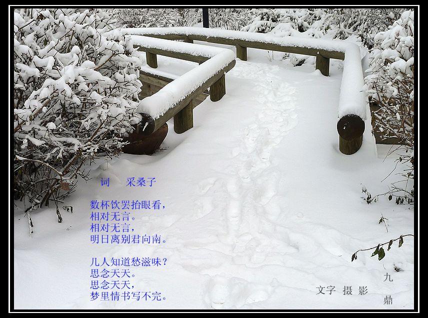 词  采桑子_图1-1