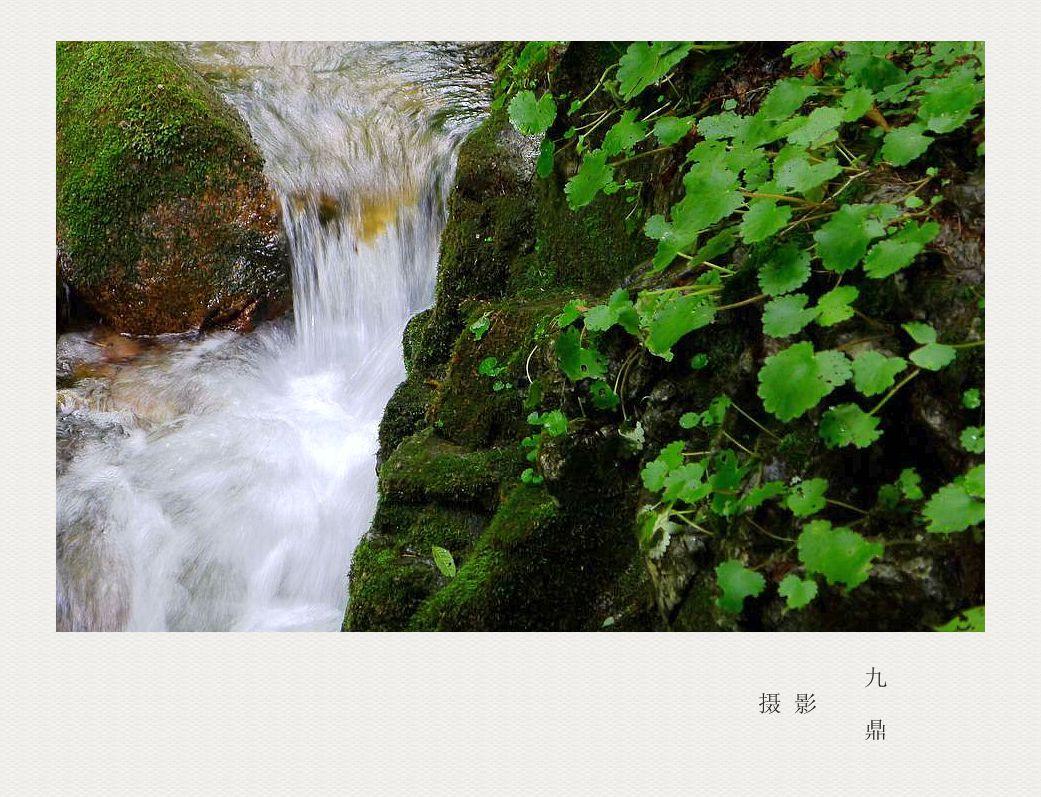 摄影  小 溪_图1-7