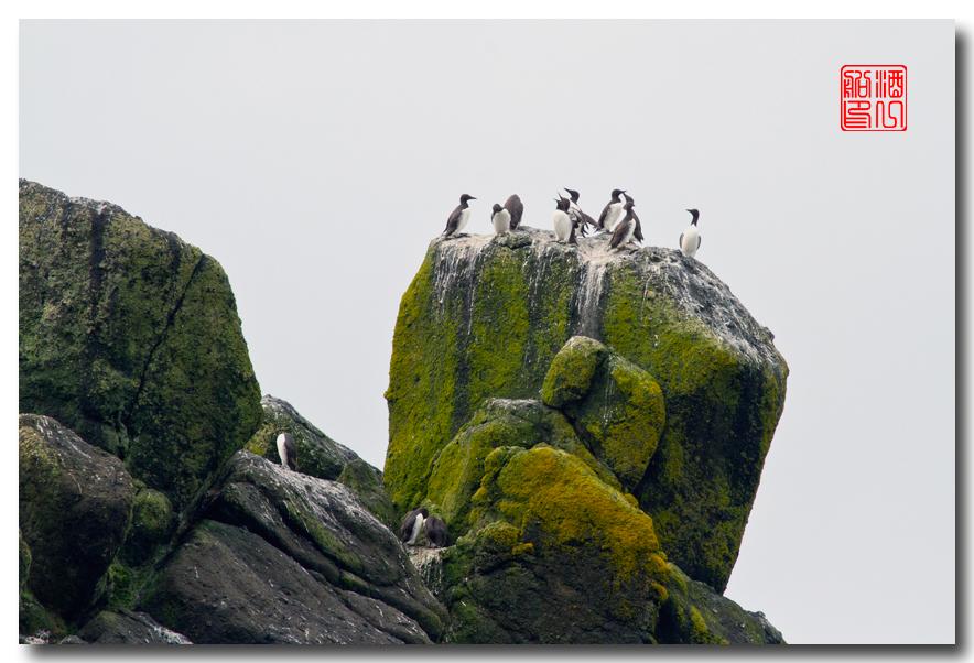 《酒一船摄影》:俄勒冈的海岸_图1-18