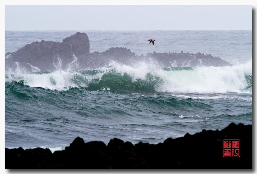 《酒一船摄影》:俄勒冈的海岸_图1-19