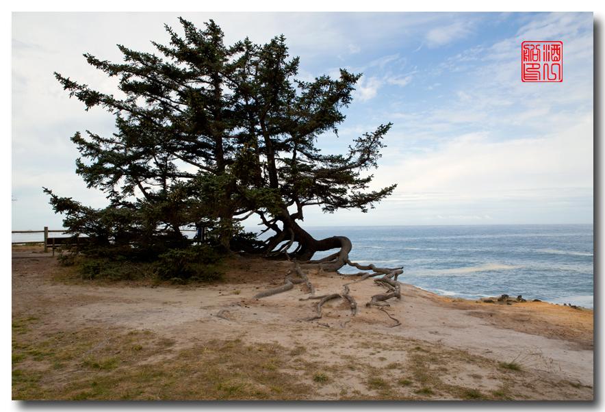 《酒一船摄影》:俄勒冈的海岸_图1-28