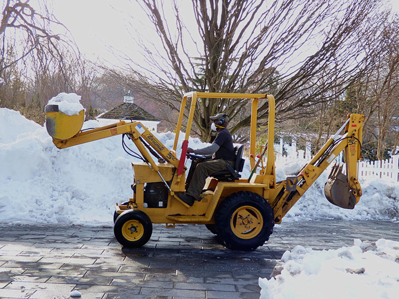 法拉盛植物园雪景_图1-20