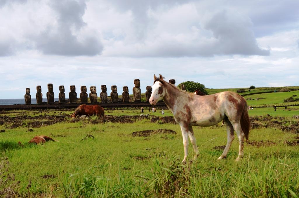 《我行故我在》之《復活節島:南太平洋的神秘之地》_图1-2