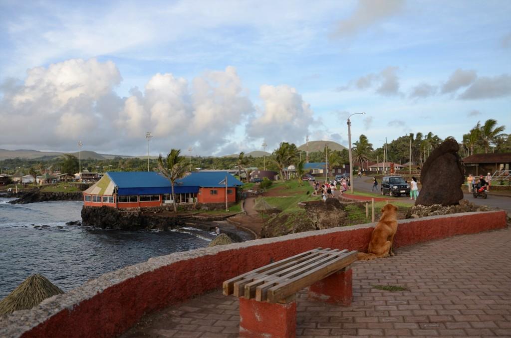 《我行故我在》之《復活節島:南太平洋的神秘之地》_图1-24