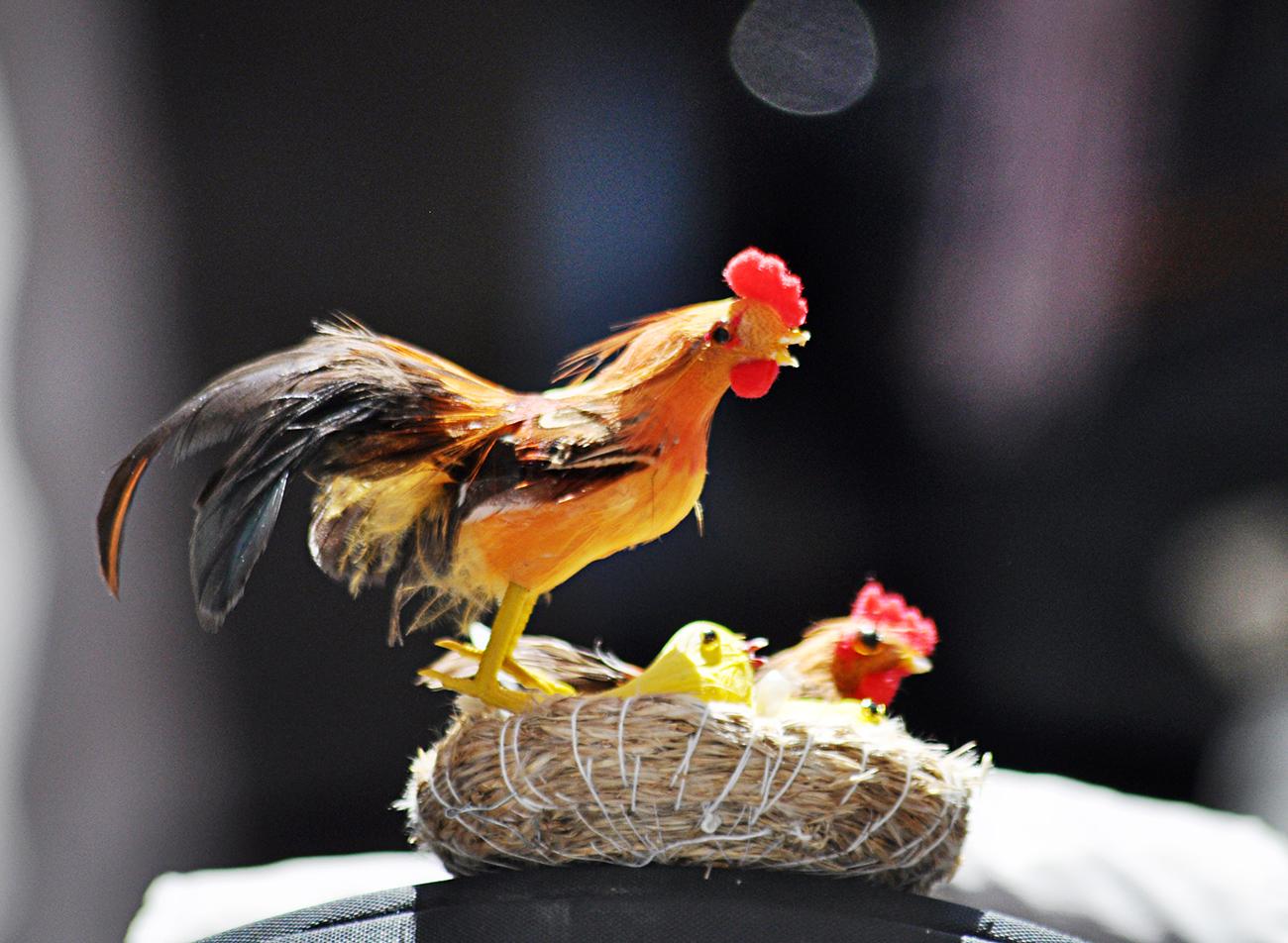 复活节---那些在帽子上说着春天故事的趣味_图1-7