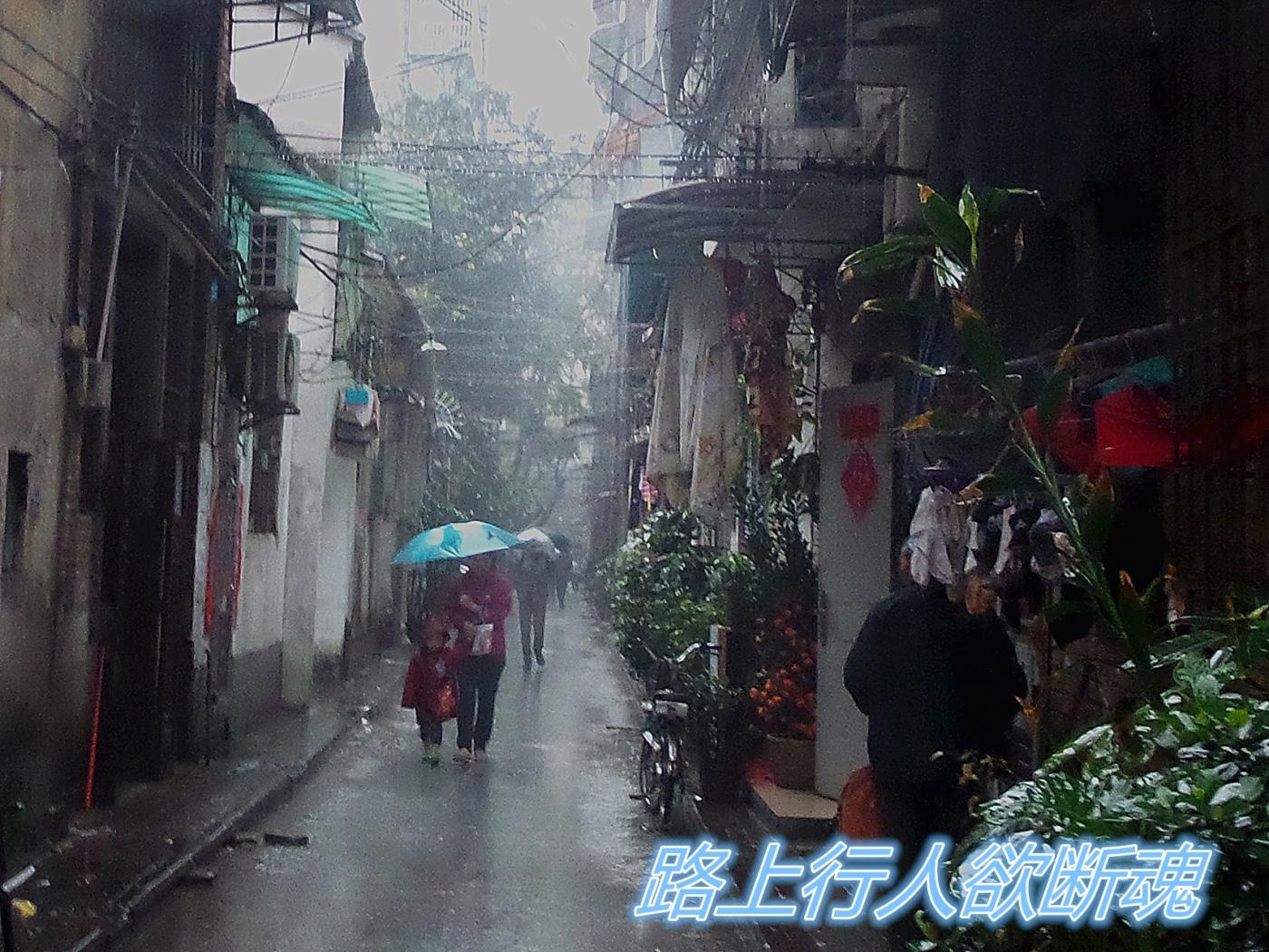 【四格照片】清明时节雨纷纷_图1-2