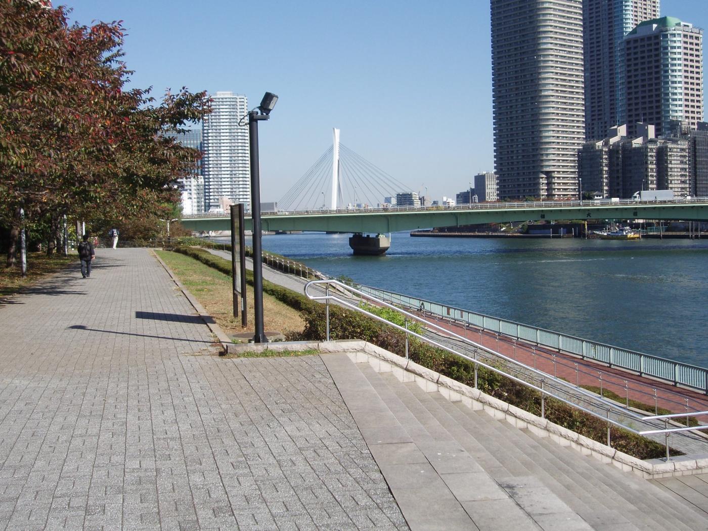 东京风景_图1-7