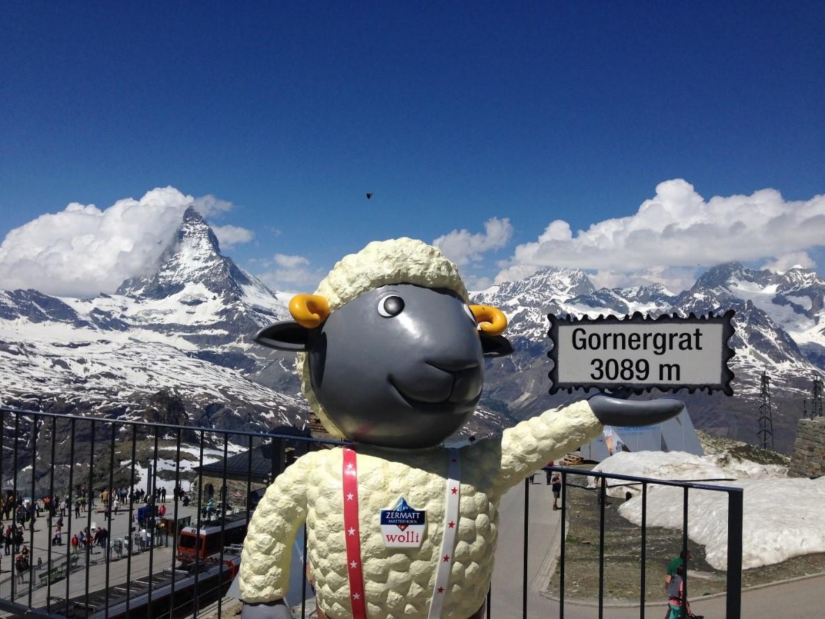 2015游记(4)环游瑞士 - 马特洪峰与冰川列车_图1-18