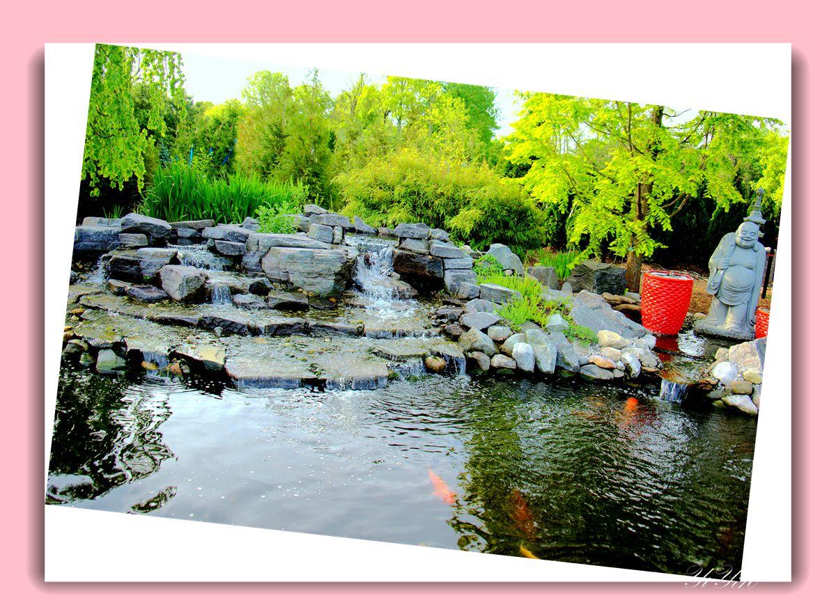 【原创】鱼池与喷水器(摄影)_图1-5