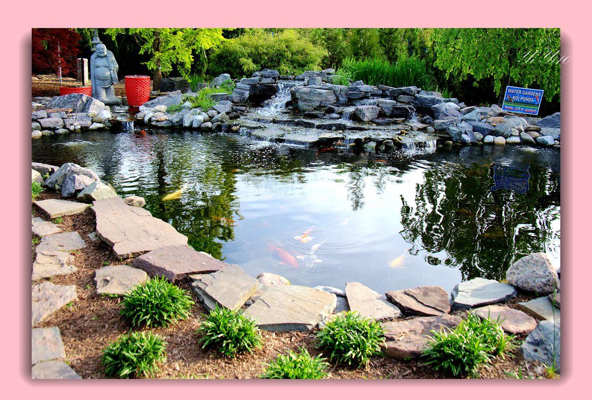 【原创】鱼池与喷水器(摄影)_图1-1