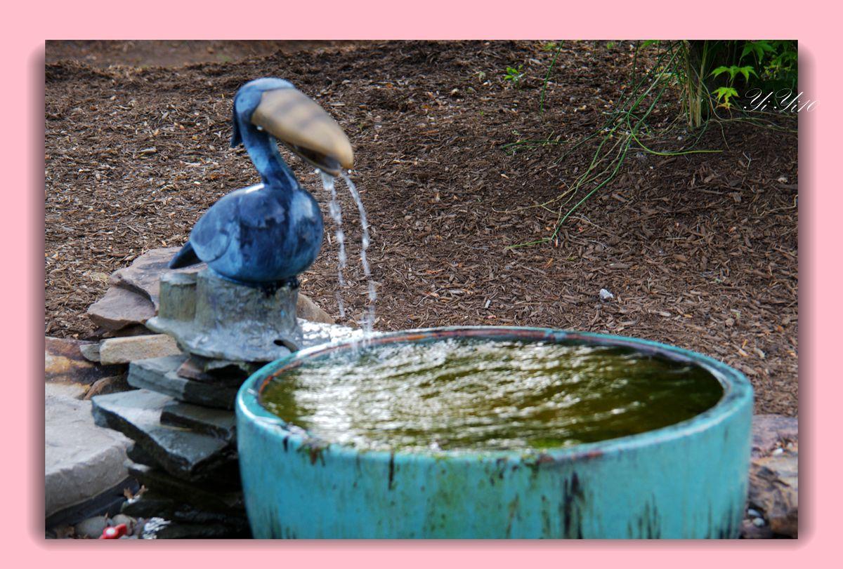 【原创】鱼池与喷水器(摄影)_图1-9