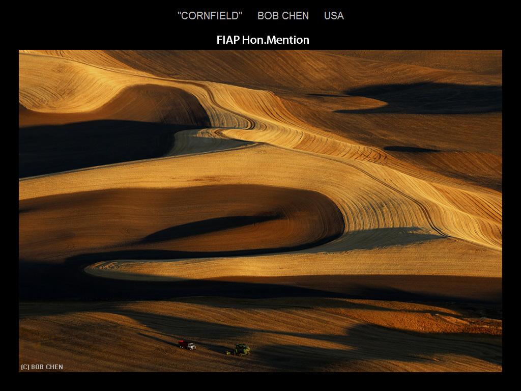 纽约摄影学会2015年国际沙龙比赛部分获奖作品_图1-13