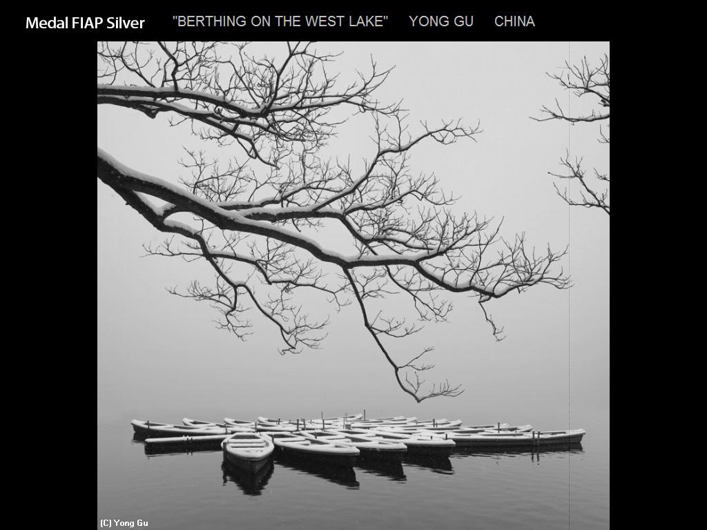 纽约摄影学会2015年国际沙龙比赛单色部分获奖作品_图1-4