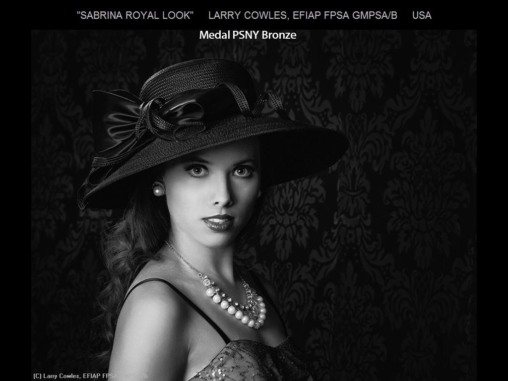 纽约摄影学会2015年国际沙龙比赛单色部分获奖作品_图1-9