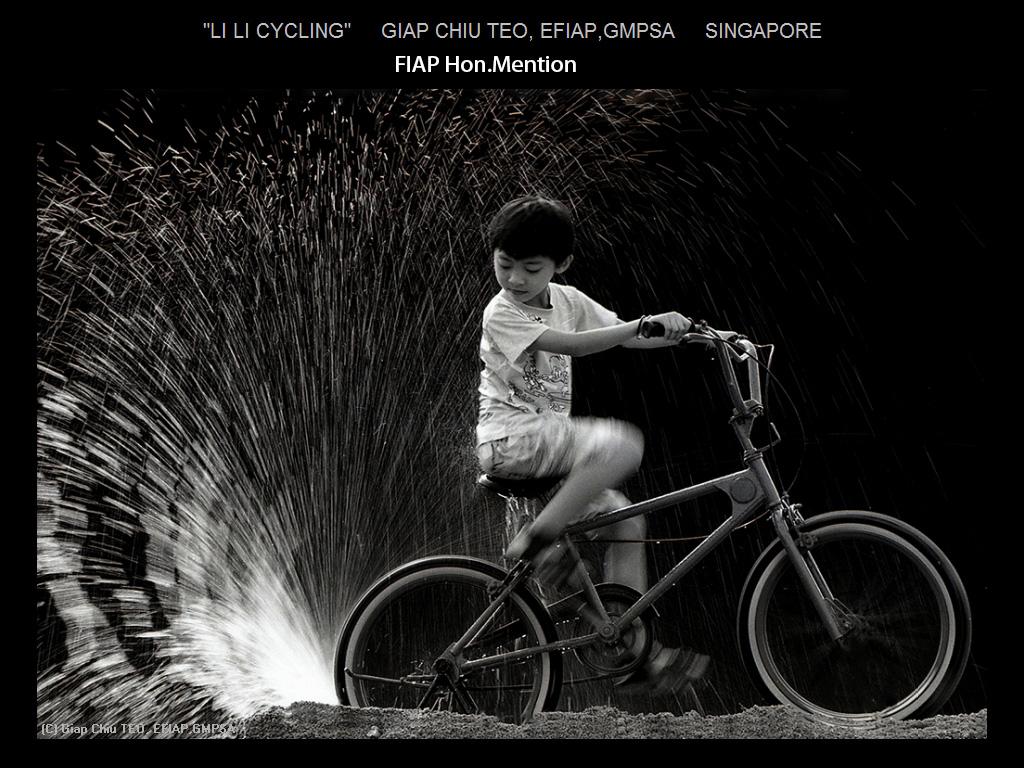 纽约摄影学会2015年国际沙龙比赛单色部分获奖作品_图1-12