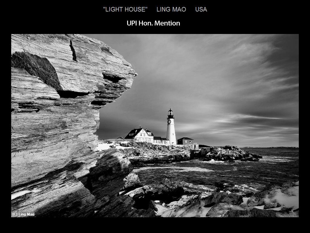 纽约摄影学会2015年国际沙龙比赛单色部分获奖作品_图1-13