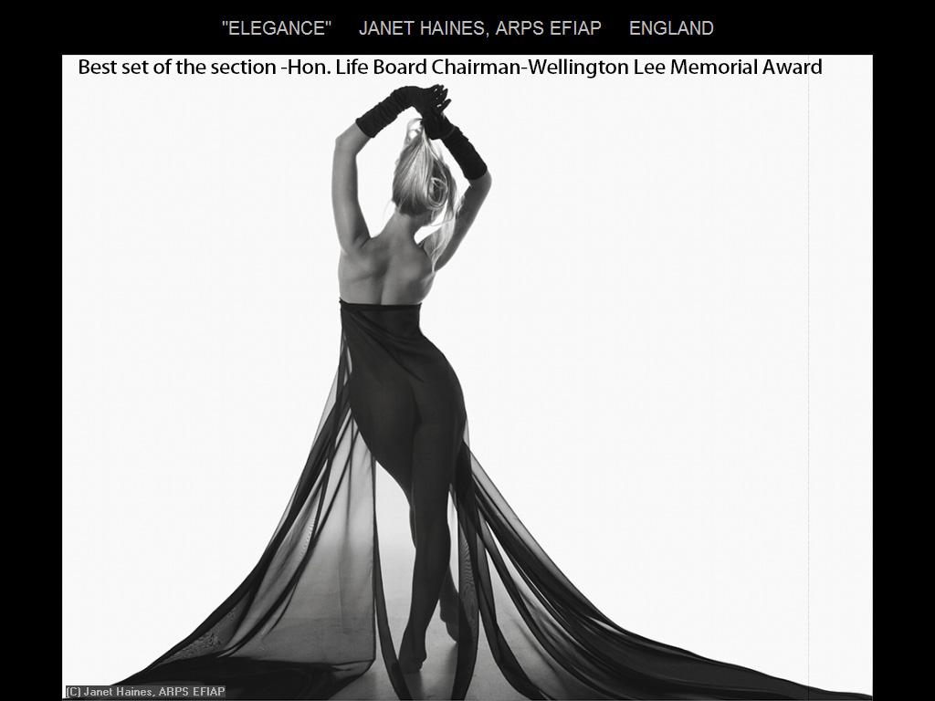 纽约摄影学会2015年国际沙龙比赛单色部分获奖作品_图1-17
