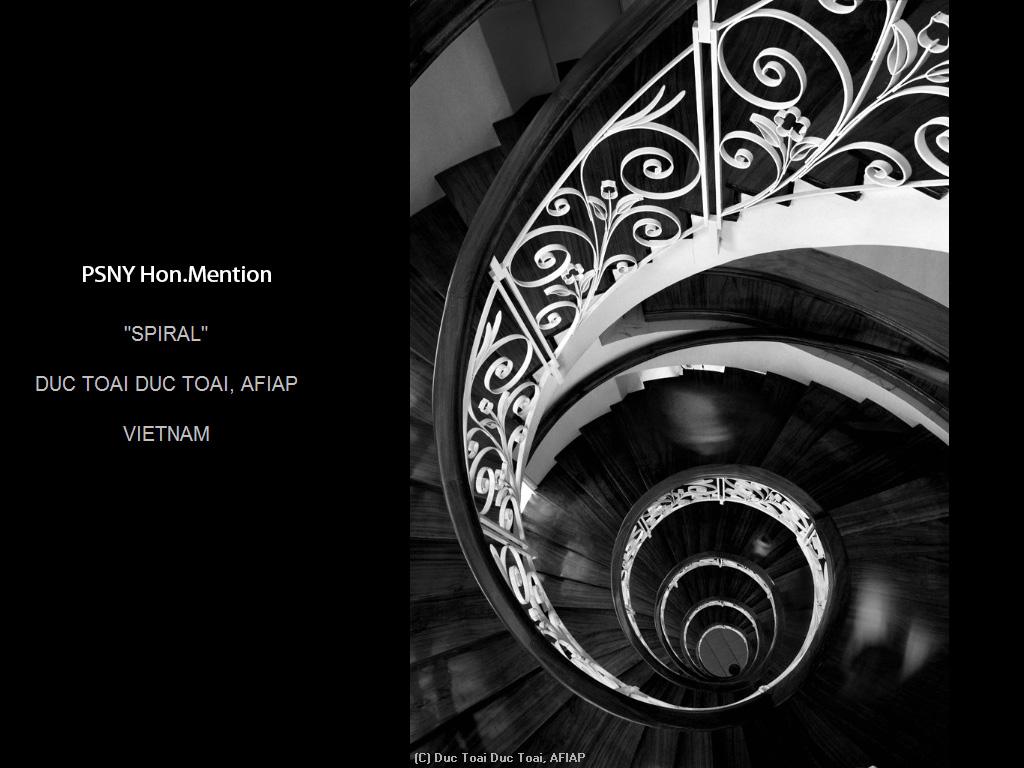 纽约摄影学会2015年国际沙龙比赛单色部分获奖作品_图1-19