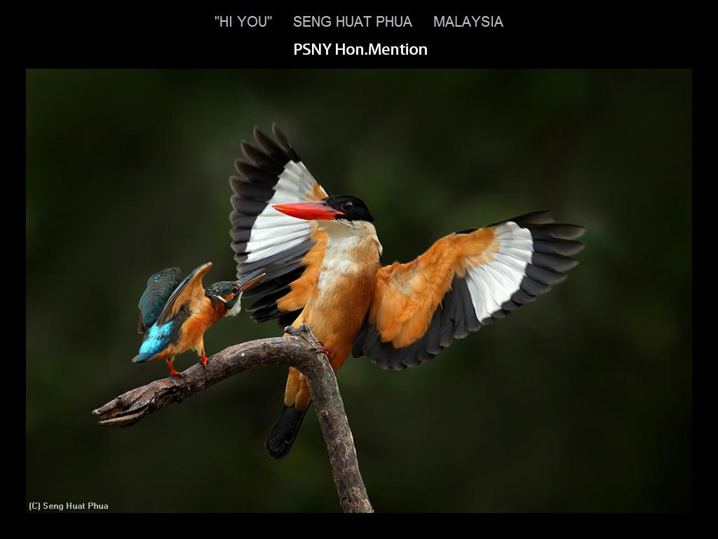 上帝的杰作-自然世界之美_图1-13