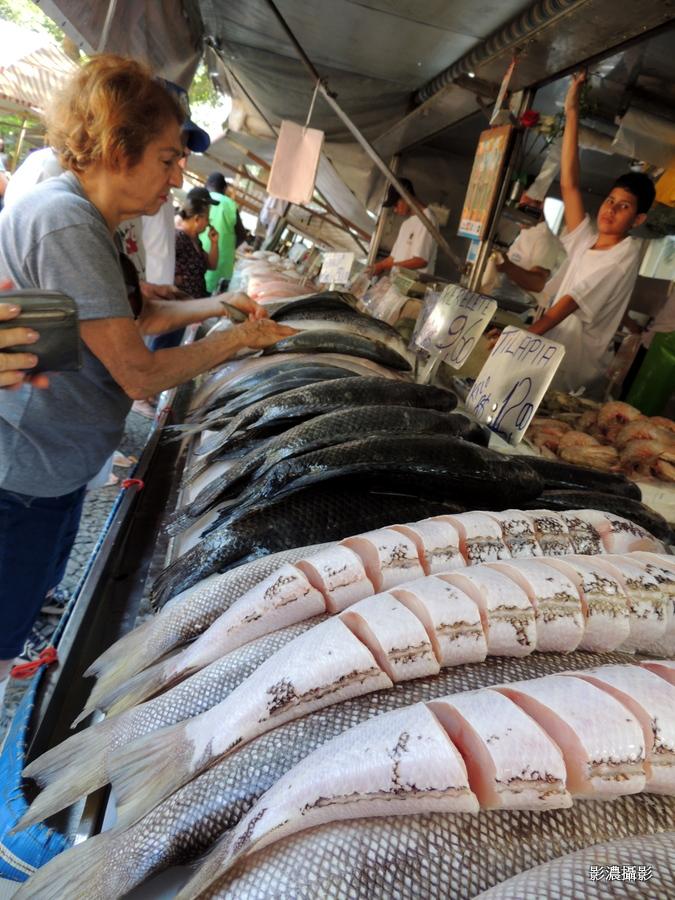 巴西魚攤子_图1-3